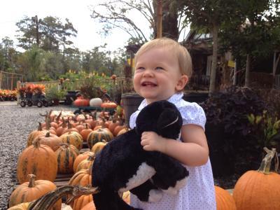 Pumpkin Patch at Banting's Nursery