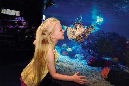 Girl in Aquarium