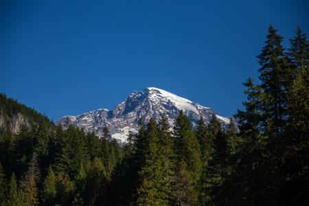 Trail of the Shadows at Longmire in Mount Rainier National Park