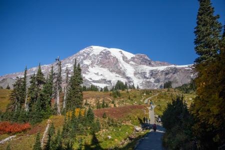 Skyline Trail at Paradise at Mount Rainier National Park