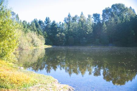 Bradley Lake Park in Puyallup