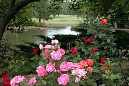 Summer - Ensley Botanical Gardens at Lake Shawnee
