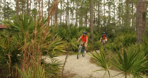 Biking / Hiking Trails