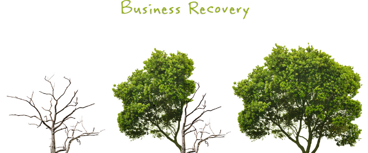 Business Recovery Trees