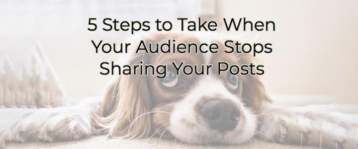 Audience Blog