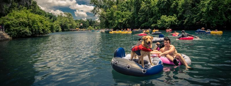 Golden Retriever Floating Down the Comal River with Owner -- The Comal River is great fun for ALL those in the family (four-legged friends included)