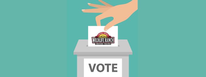 Vote for best safari park
