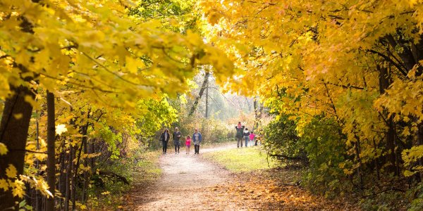 A family hikes a trail during the fall