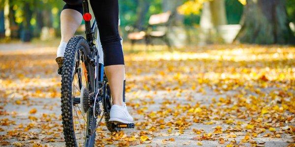 BikeToTable_OG-1200x630