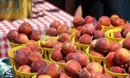 Peaches in basket at farmers market