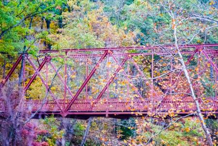 Warren truss bridge at McCloud Nature Park