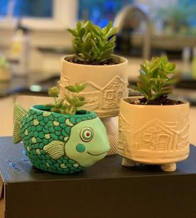 Handcrafted Planter by Local Artist Amy Gilmore