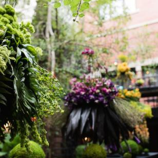 59th Dearborn Garden Walk - Image