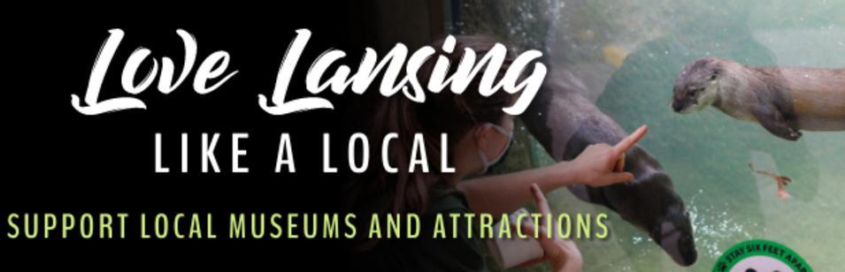 Love Lansing Museums