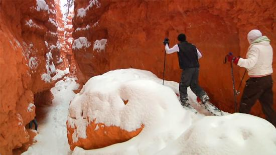 Snowshoeing-Bryce-Canyon