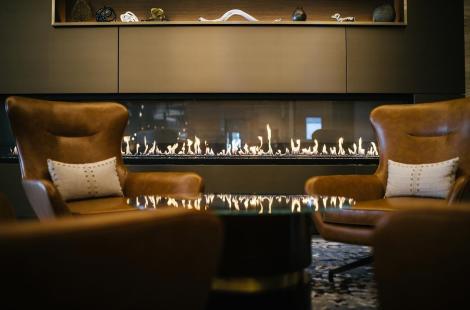 Omni Fireplace