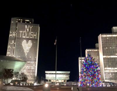 2020 Empire State Plaza Holiday Tree