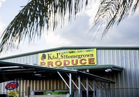K&J Homegrown Produce in Arcadia