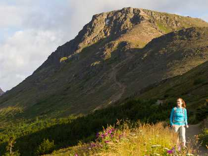 Hikers love Flattop Mountain, one of the most accessible area hikes