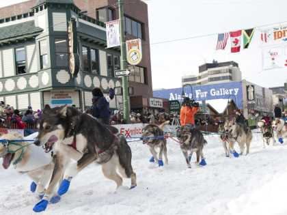 Iditarod Sled Dog Race downtown Anchorage Alaska