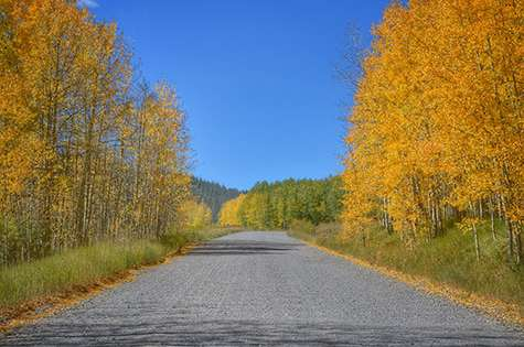 Autumn Magic Along Military Ridge Trail >> 20 Things To Do This Fall In Steamboat The Bucket List