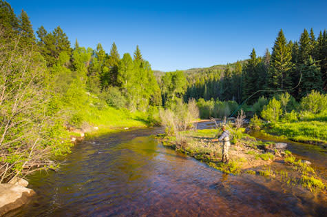 Fly fishing in Steamboat Springs, Colorado