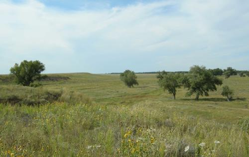 Modern day Sand Creek Massacre location, near Eads, Colorado.