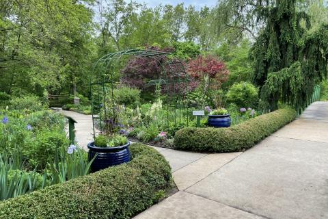 Garden at OP Arboretum