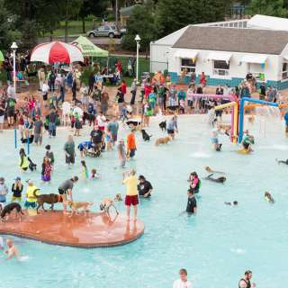 Swimming Pools | Visit Fort Collins