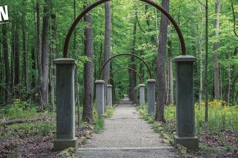 ϾSoIN Virtual Background 2 - Rose Island Charlestown State Park}}