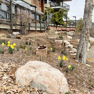 Durango Botanic Gardens, Durango, CO