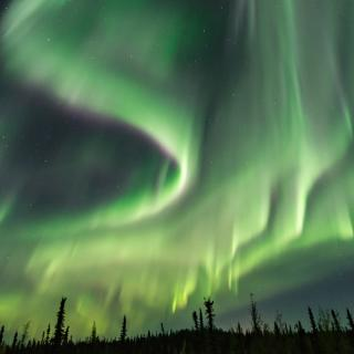 a panoramic view of a sky filled with northern lights