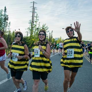 10k Run Bees