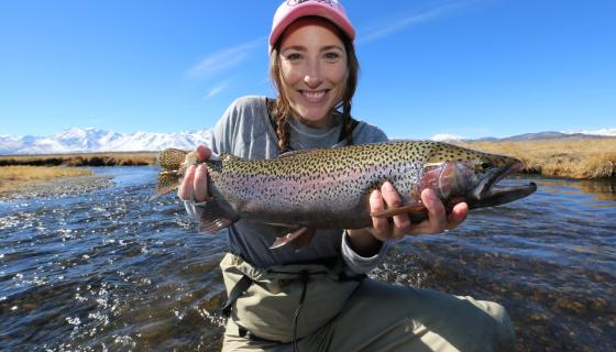 Owens River Rainbow