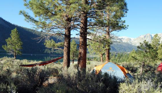 Defualt Camping Image