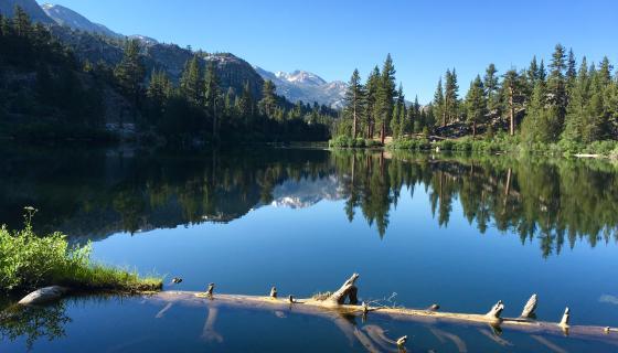 roosevelt lake ca