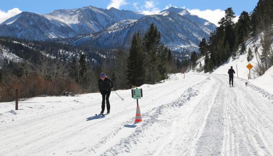 Cross country skiing Rock Creek