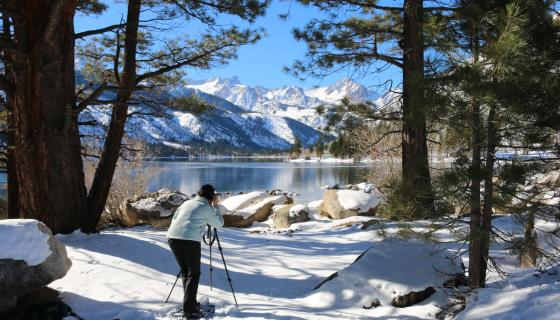 Twin Lakes Bridgeport photographer