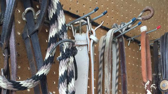 Tack Room at The Equestrian Park