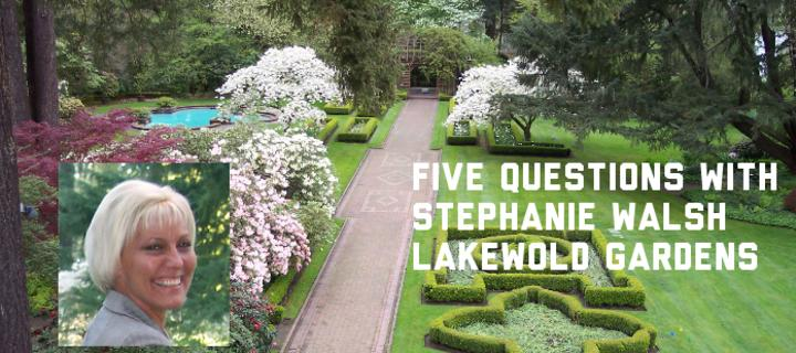 Five Questions With Stephanie Walsh Executive Director Of