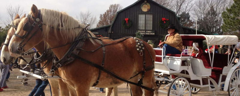 Old Fashioned Christmas at Prairie Pines