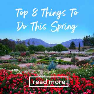 Top 8 Things To Do This Spring in Temecula, CA