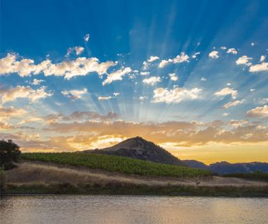 Sunrays over a mountain with a vineyard in the foreground