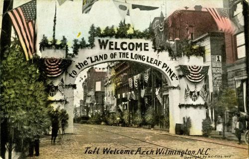 CF Museum - Long Leaf Pine arch image 1909