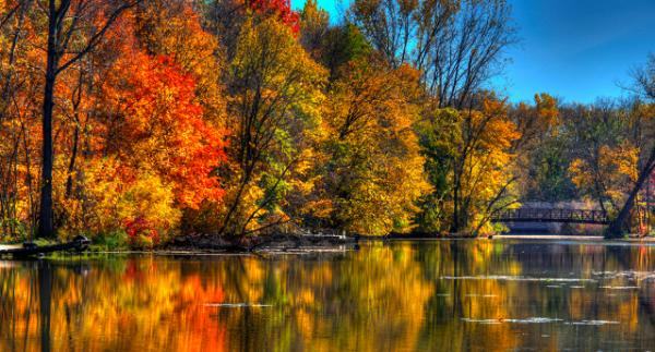 Trees along the shore of Elm Creek are colored in fall reds and oranges
