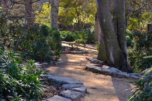 Central Park Header