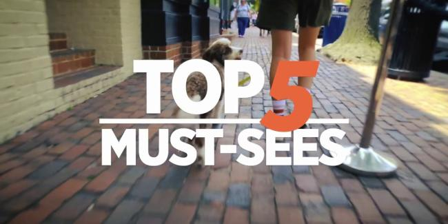 Top 5 Must-Sees