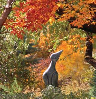 Fall in love with Red Butte Garden