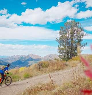 Wasatch Crest Trail Mountain Bike Ride