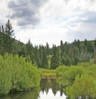 Pond on Big Cottonwood Creek